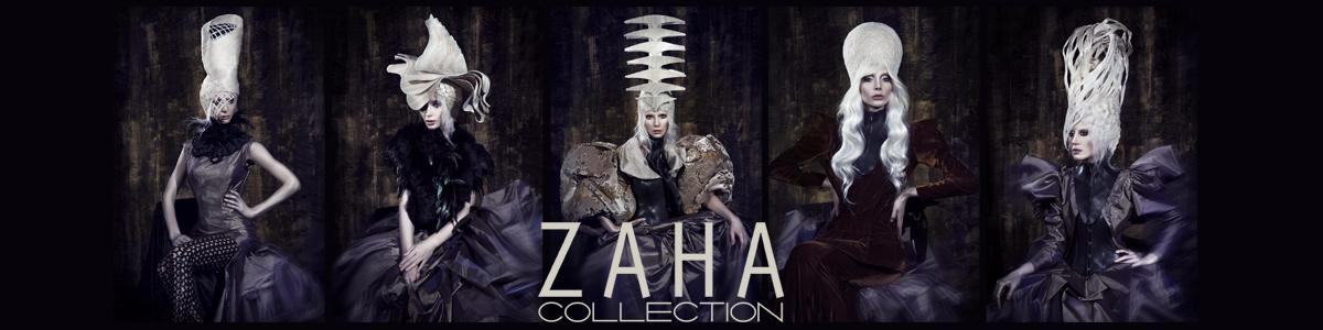 Zaha Slide 2